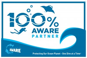 Aware Dive Flag small
