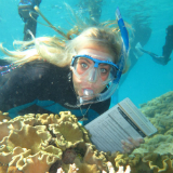 Passions Helps Volunteers Understand The Reef