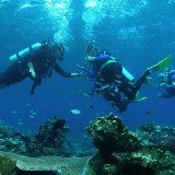 Passions-of-Paradise_Great-Barrier-Reef-Scuba-Diving