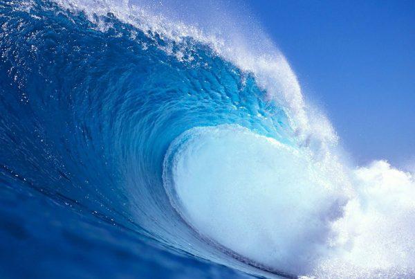 wave-01