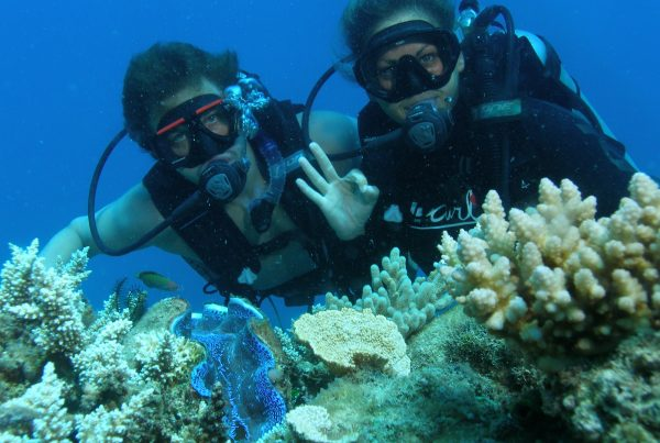 Certified Divers at Paradise Reef cairns reef tour passions of paradise