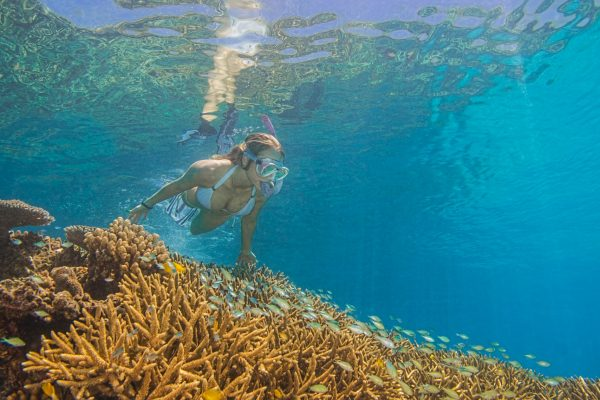 ChristianMiller_reefsnorkel_passions (1 of 1)