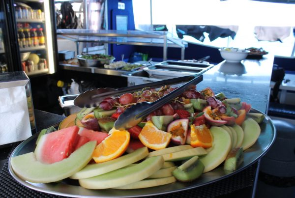 buffet lunch passions of paradise cairns reef tour