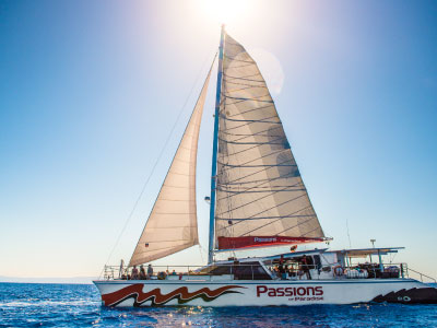passions-of-paradise-snorkelling-cairns-3
