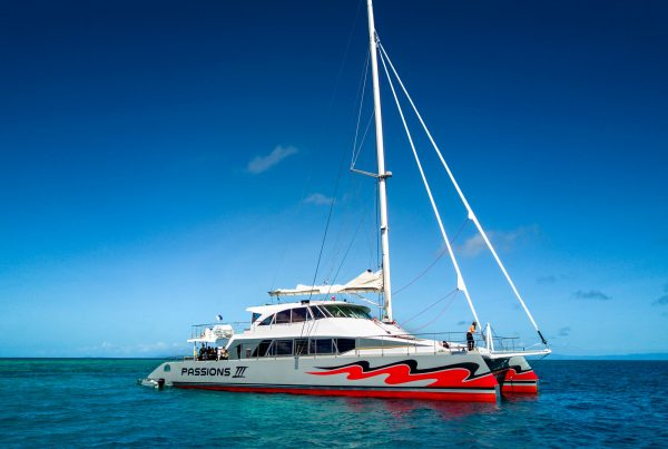 Passions of Paradise catamaran - a plastic straw free great barrier reef operator