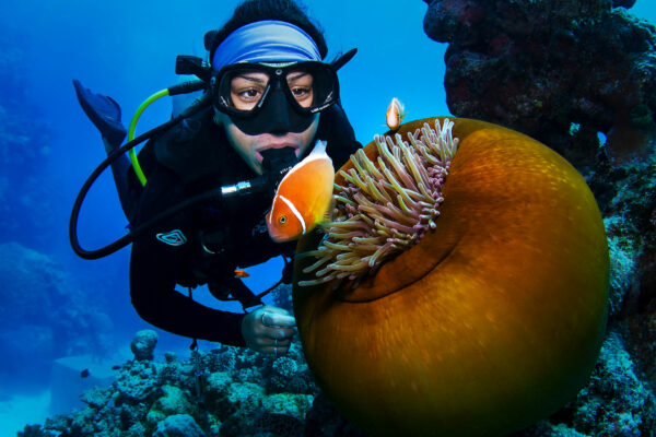 Passions-of-Paradise-Snorkeling,-scuba,-cruises-and-eco-tours-in-Great-Barrier-Reef-9