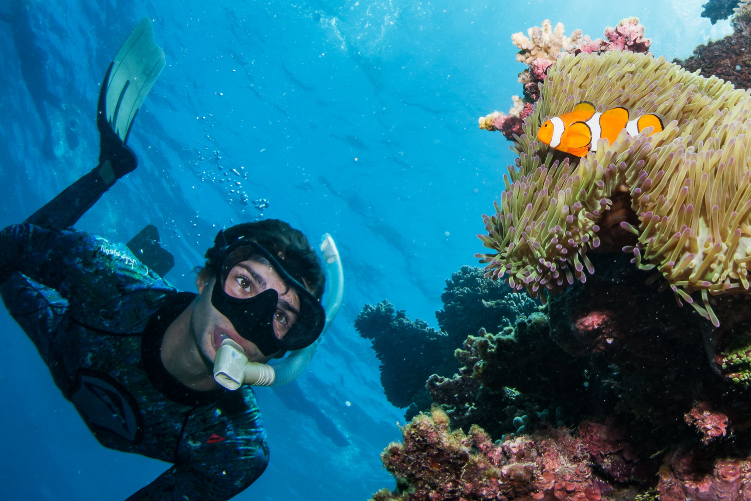 five snorkel fails and how to fix them before exploring the great
